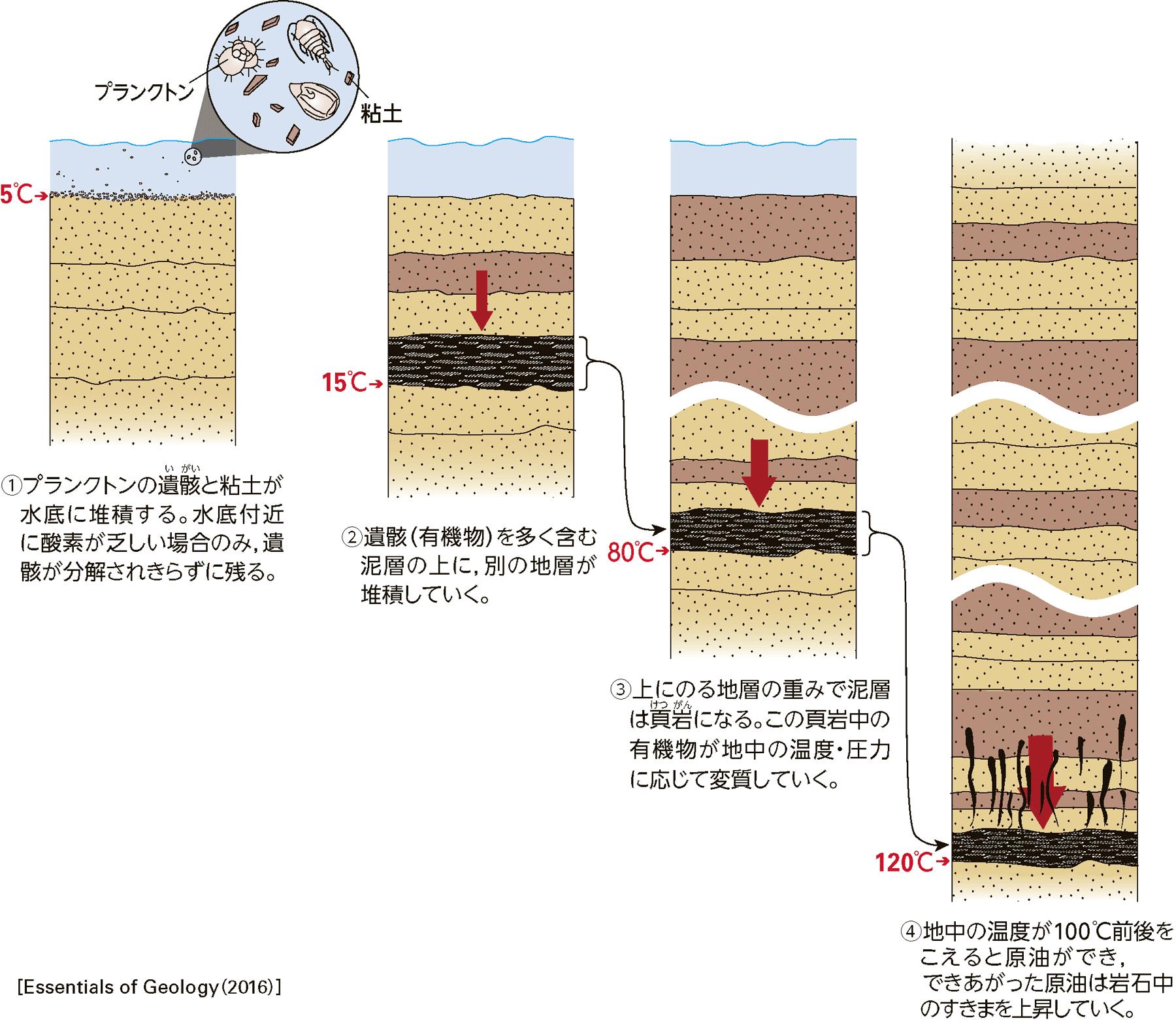 原油の生成過程の模式図